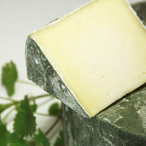 A close up of Cornish Yarg Cheese