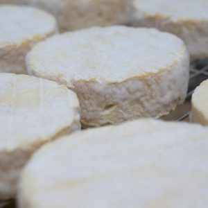 Whyte Wytch Cheese